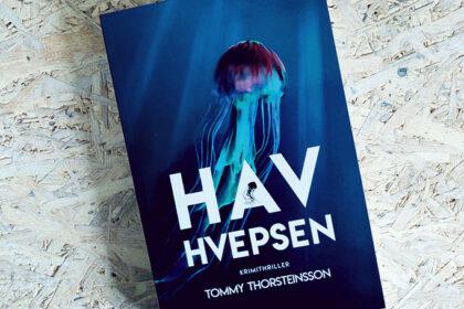 Boganmeldelse - Havhvepsen af Tommy Thorsteinsson